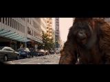 Восстание планеты обезьян (Захват города)